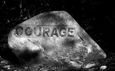 Tuesday Tidbit on the Courage to Lead