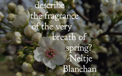 BFP Inspiration Moment on the Breath of Spring