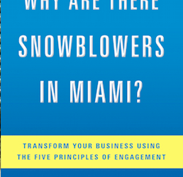 Book Review: Why Are There Snowblowers in Miami?