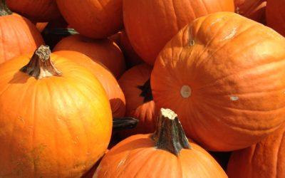 Tuesday Tidbit on Celebrating Halloween at Work