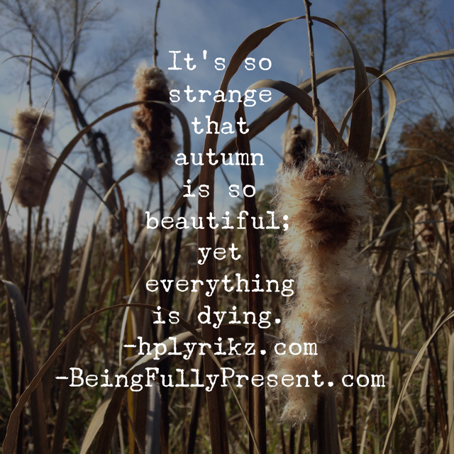 BFP Inspiration Moment on the Beauty of the Autumn Dying