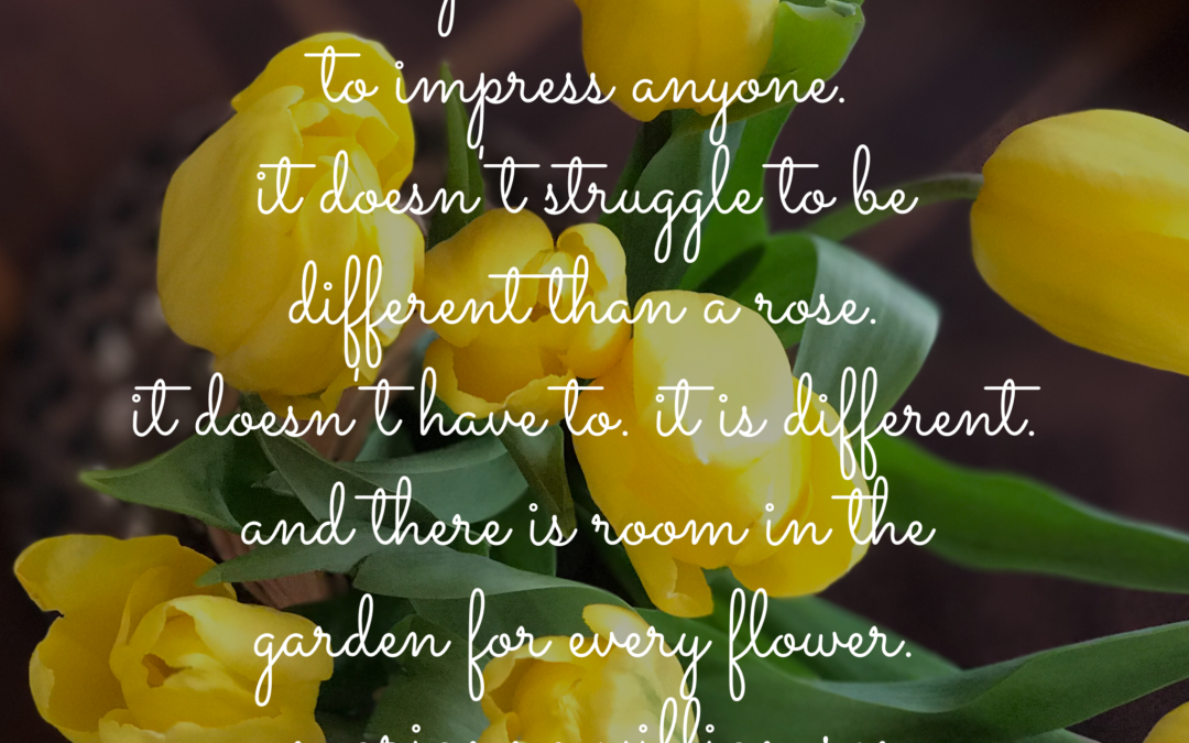 BFP Inspiration Moment on Flowers, People and Diversity