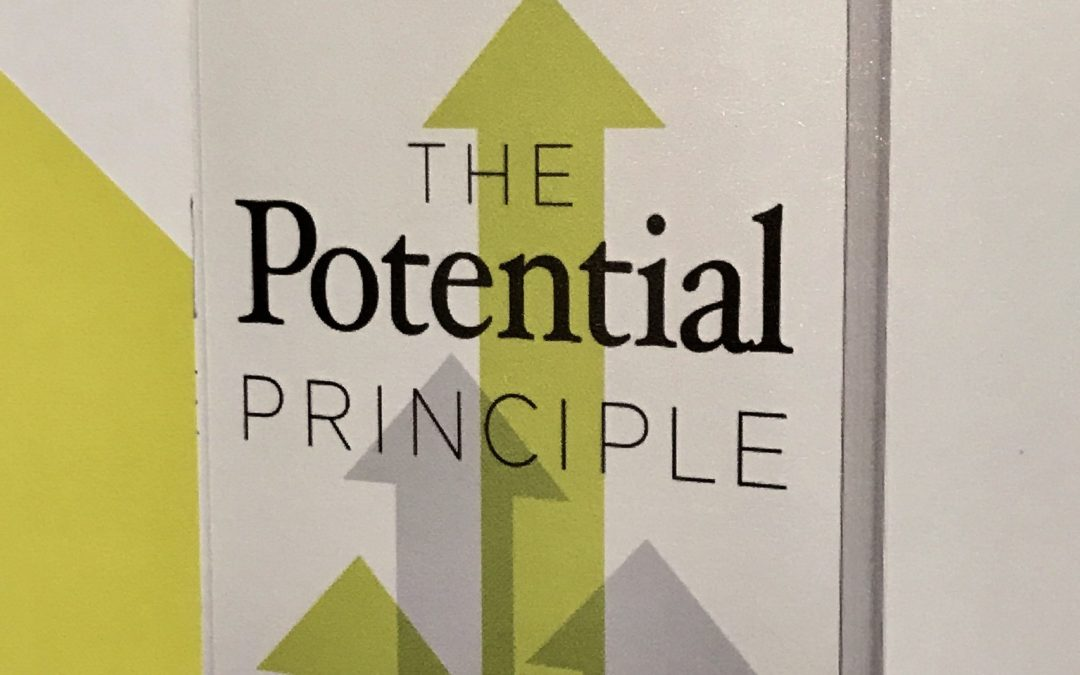 Book Review: The Potential Principle